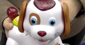 chien-Bobby-chien-niquer-monde