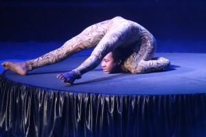 Cirque Medrano 2015 1058