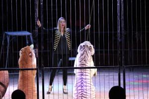Cirque Medrano 2015 154